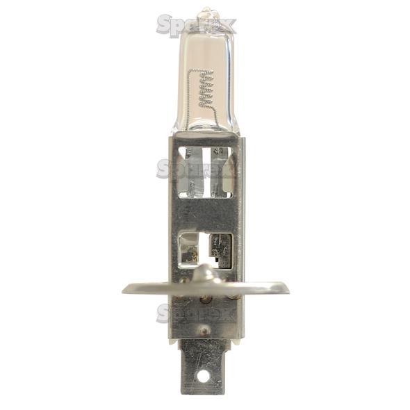 Koplamp, 24V, 70W Watts, P14.5s Voet
