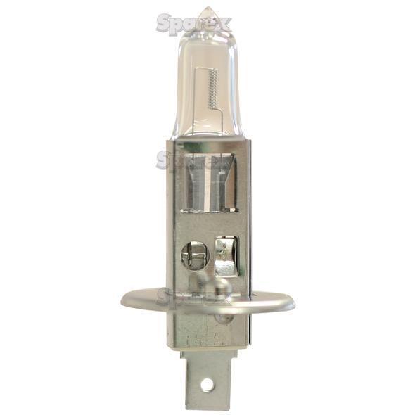 Koplamp, 12V, 100W Watts, P14.5s Voet