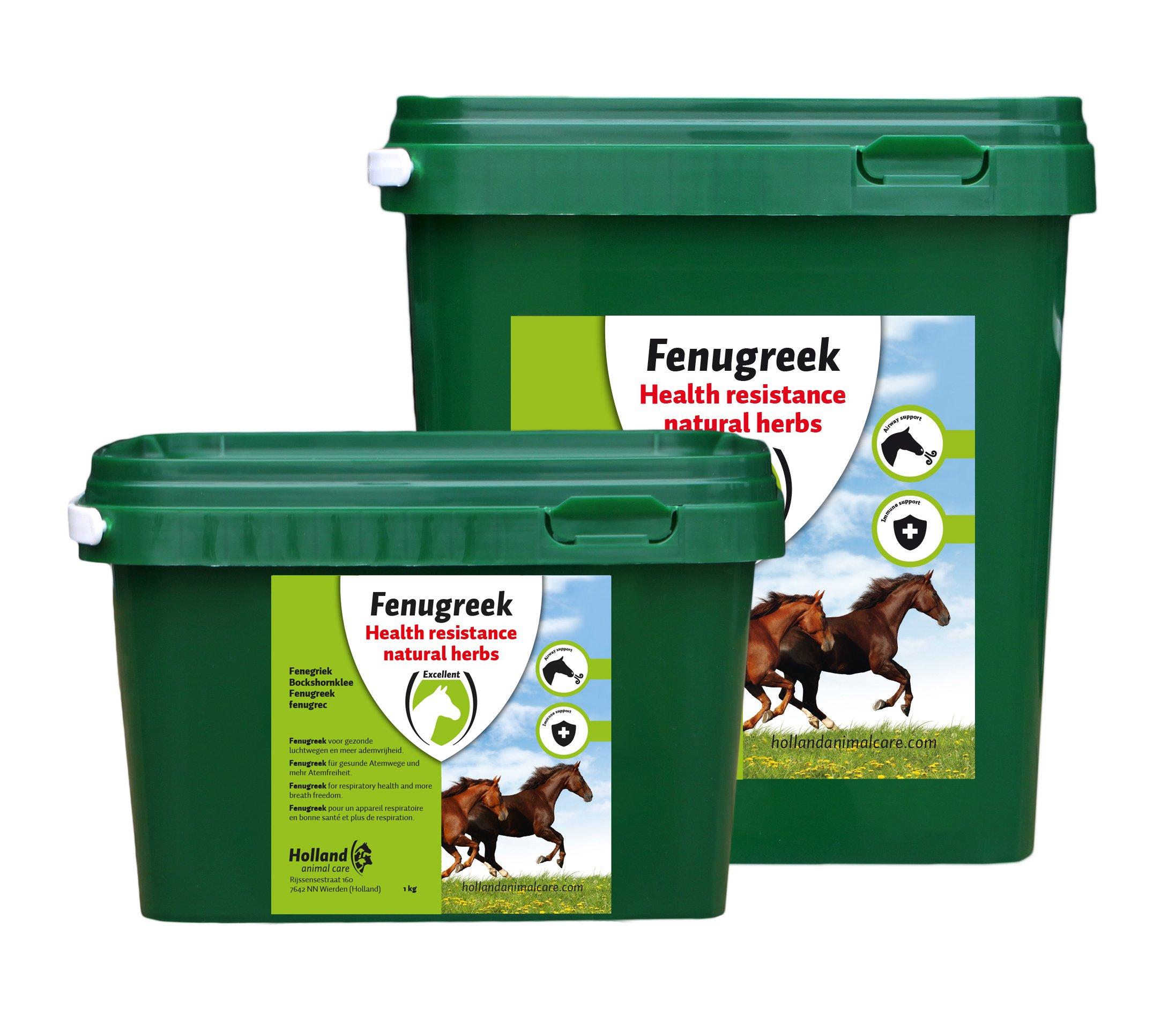 Fenugreek (Fenegriek)
