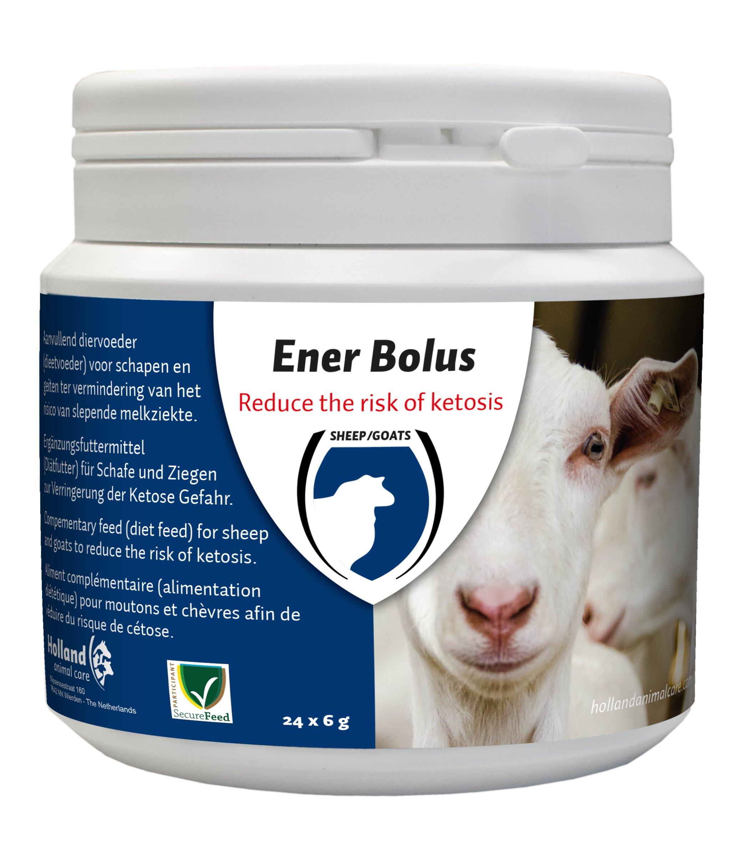 Ener Bolus Schaap & Geit