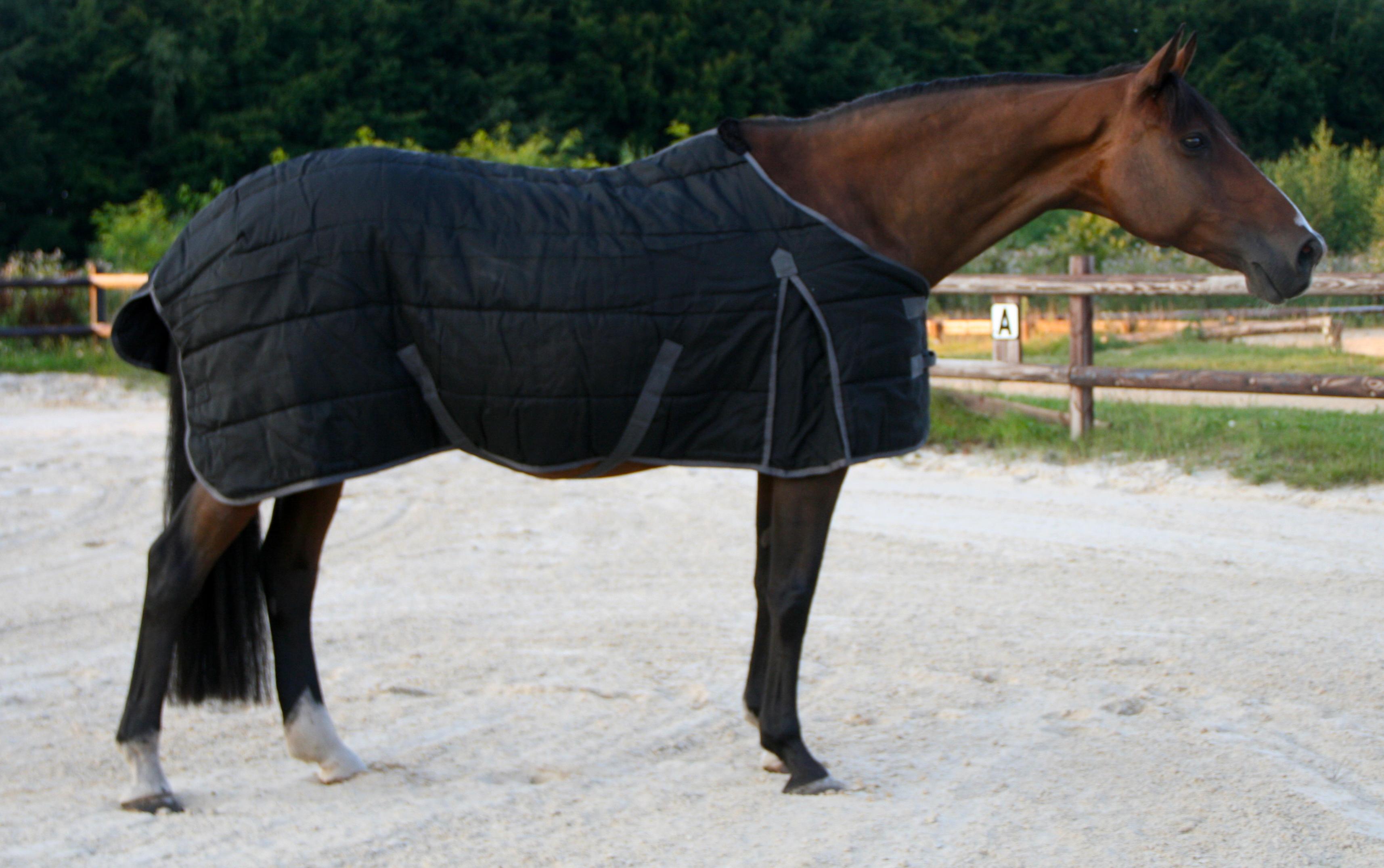 Excellent stal deken donker blauw/grijs 165cm