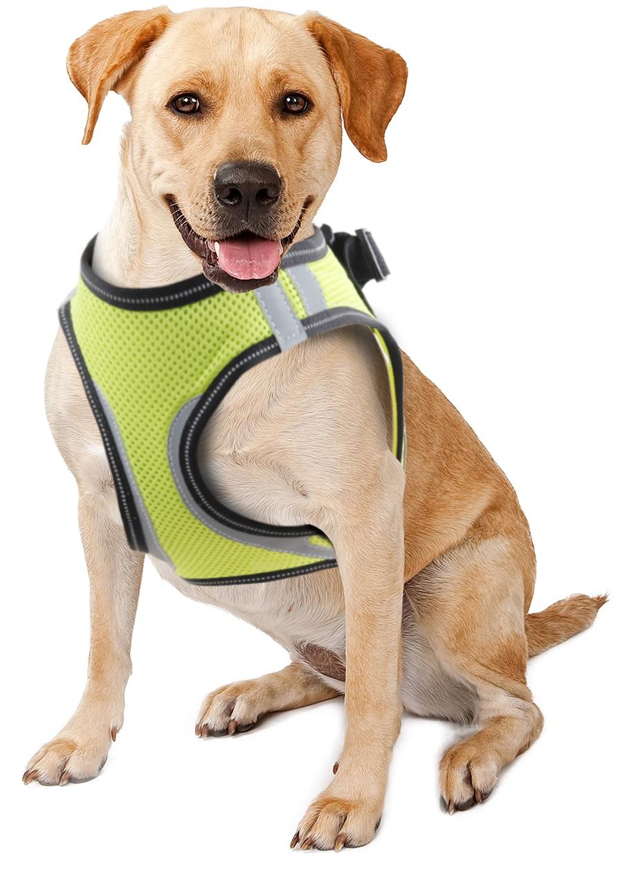 Doggy Safety Harness L. A:38-40cm B:42-50cm