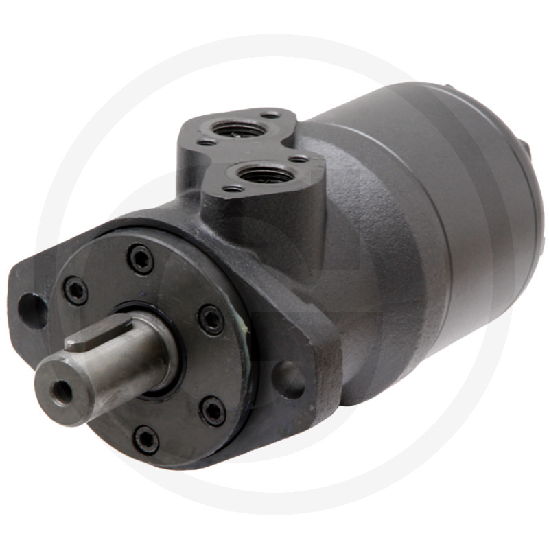 "Motor BMR 80cc D=25mm G 1/2"""