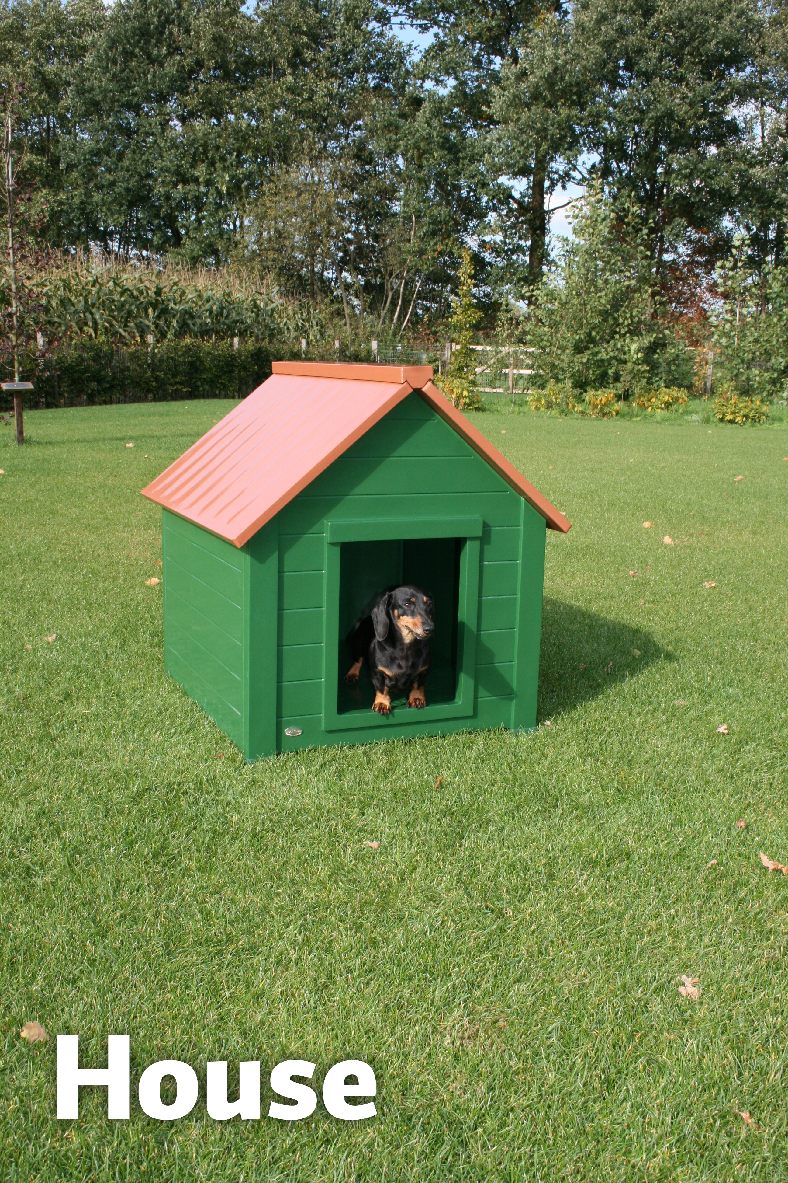 Dog House Medium Bungalow