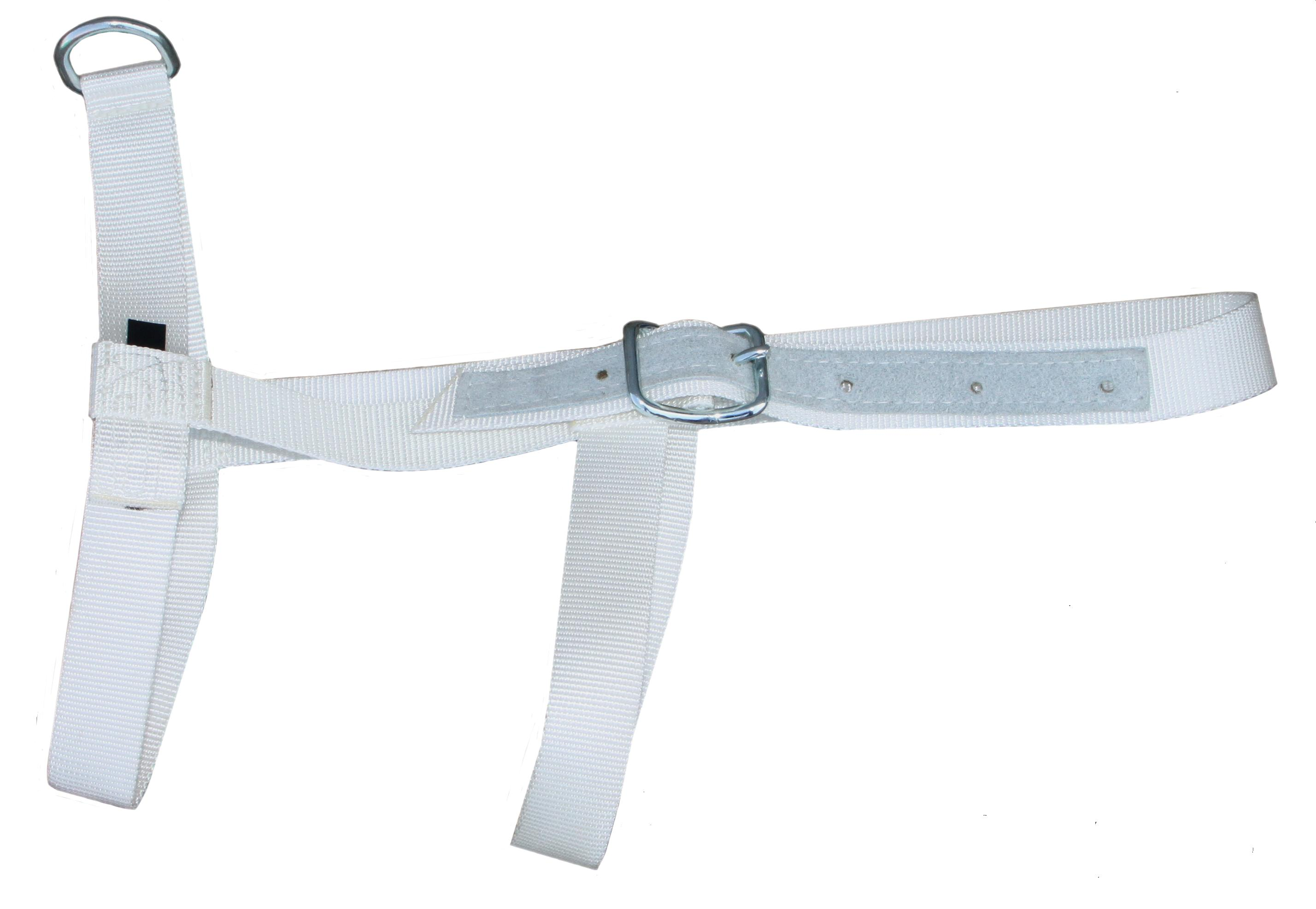 Halster Kalf wit met keelband