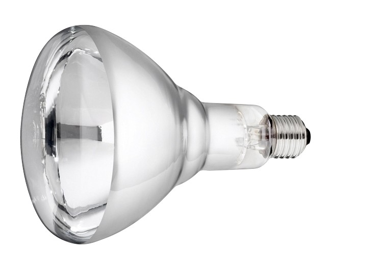 Lamp 150w wit Hard Glas Philips