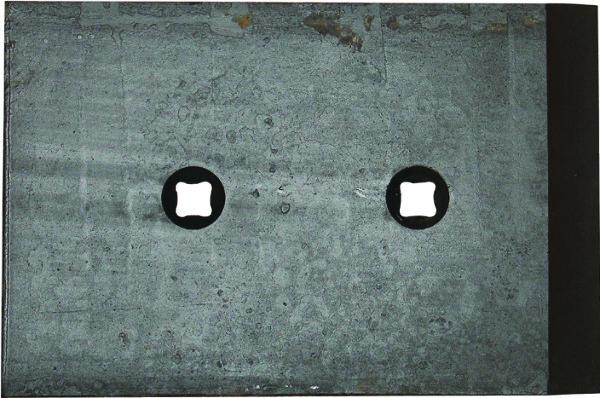 SLIJTDEEL ZOOL 010327 GOIZIN (NIET-ORIG.)
