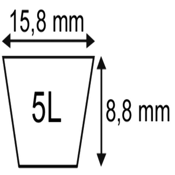 V-SNAAR PLATINIUM 5L72''